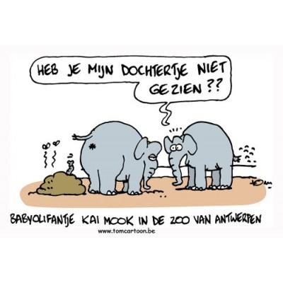 Cartoons Antwerpen